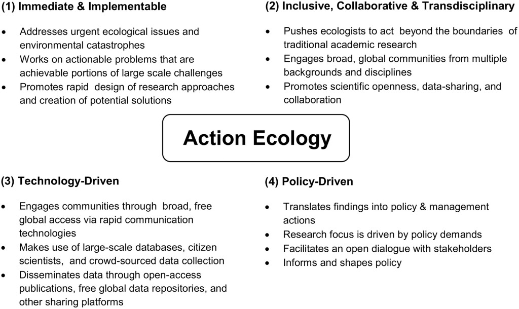 The four key defining characteristics of action ecology. Figure (CC BY 4.0) reproduced and reused from Rachel L. White et al. (2015) The next generation of action ecology: novel approaches towards global ecological research.Ecosphere6(8): art134.